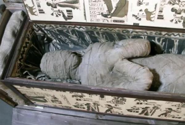 A98971 boy finds mummy attic copy